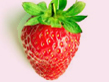 Erdbeere - ein Hochgenuß in fast allen Liebesspeisen.